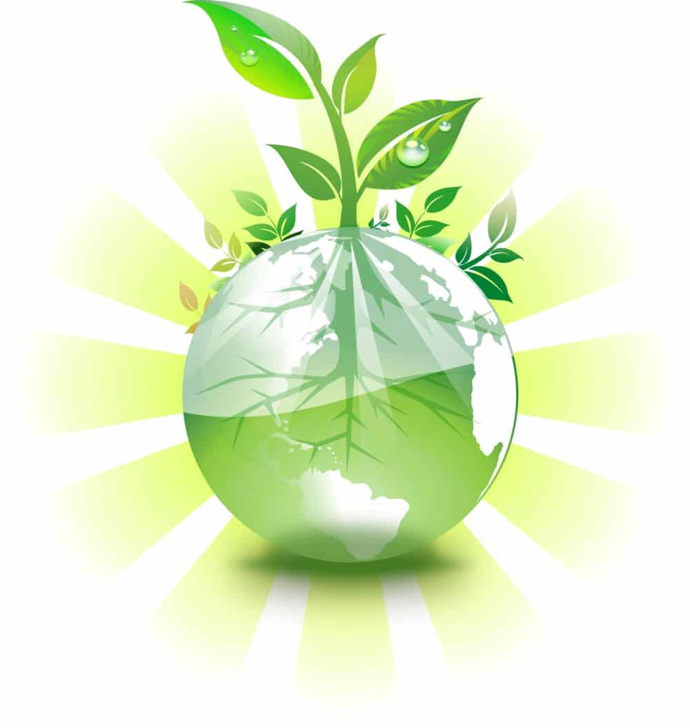 Nature-Earth-spotless-australia-commercial-cleaning